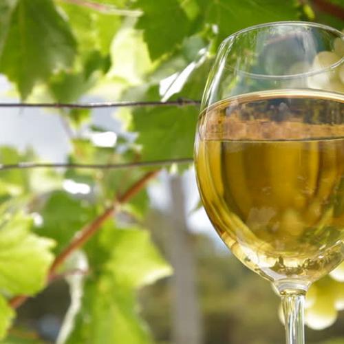 Baltas ( Pinot Grigio) 750 ml